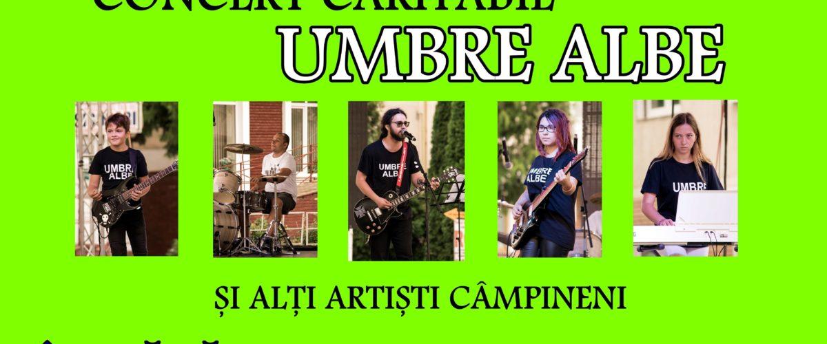 Concert folk-rock, în scop caritabil